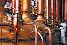 Vision Kompakt-SPS Brauerei
